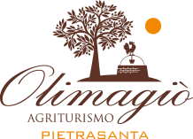 logo-olimagio-big